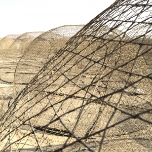 Desert Fishing_Robert Davidian-1