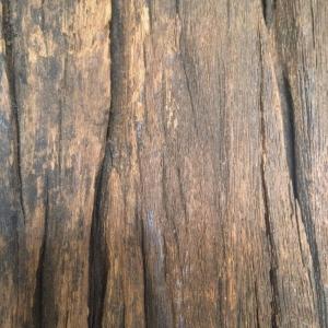 coarse wood
