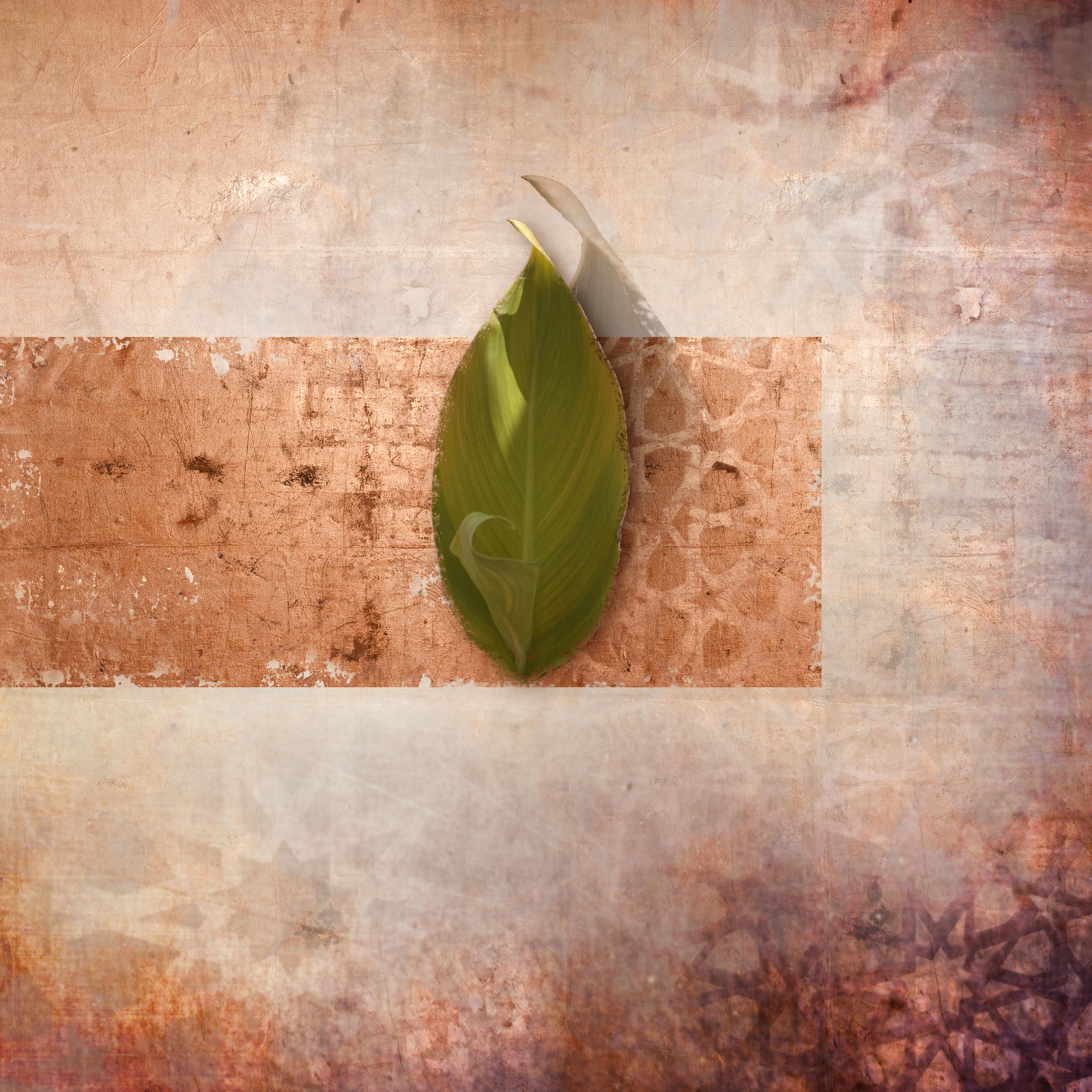 new leaf_03 copy