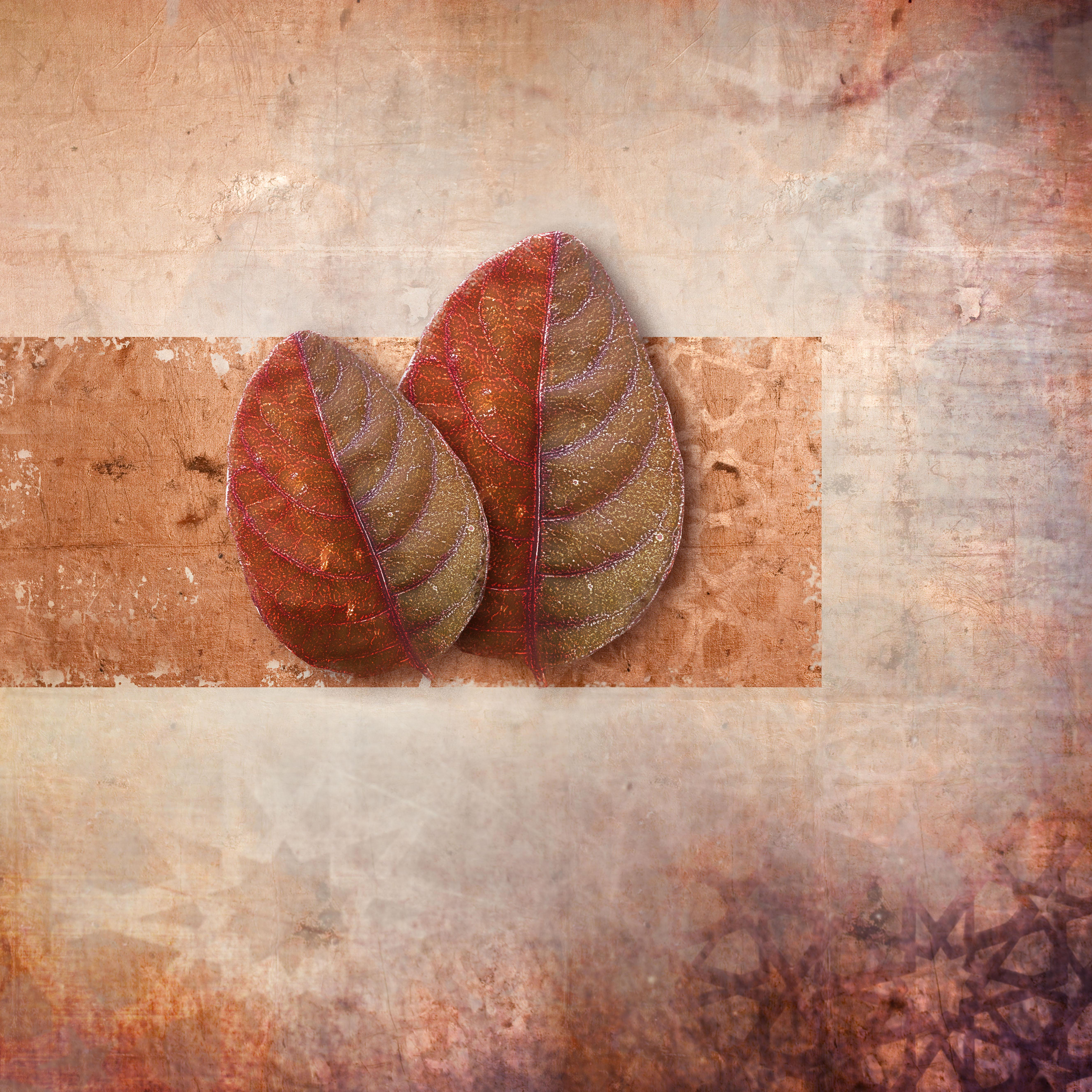 new leaf_06 copy