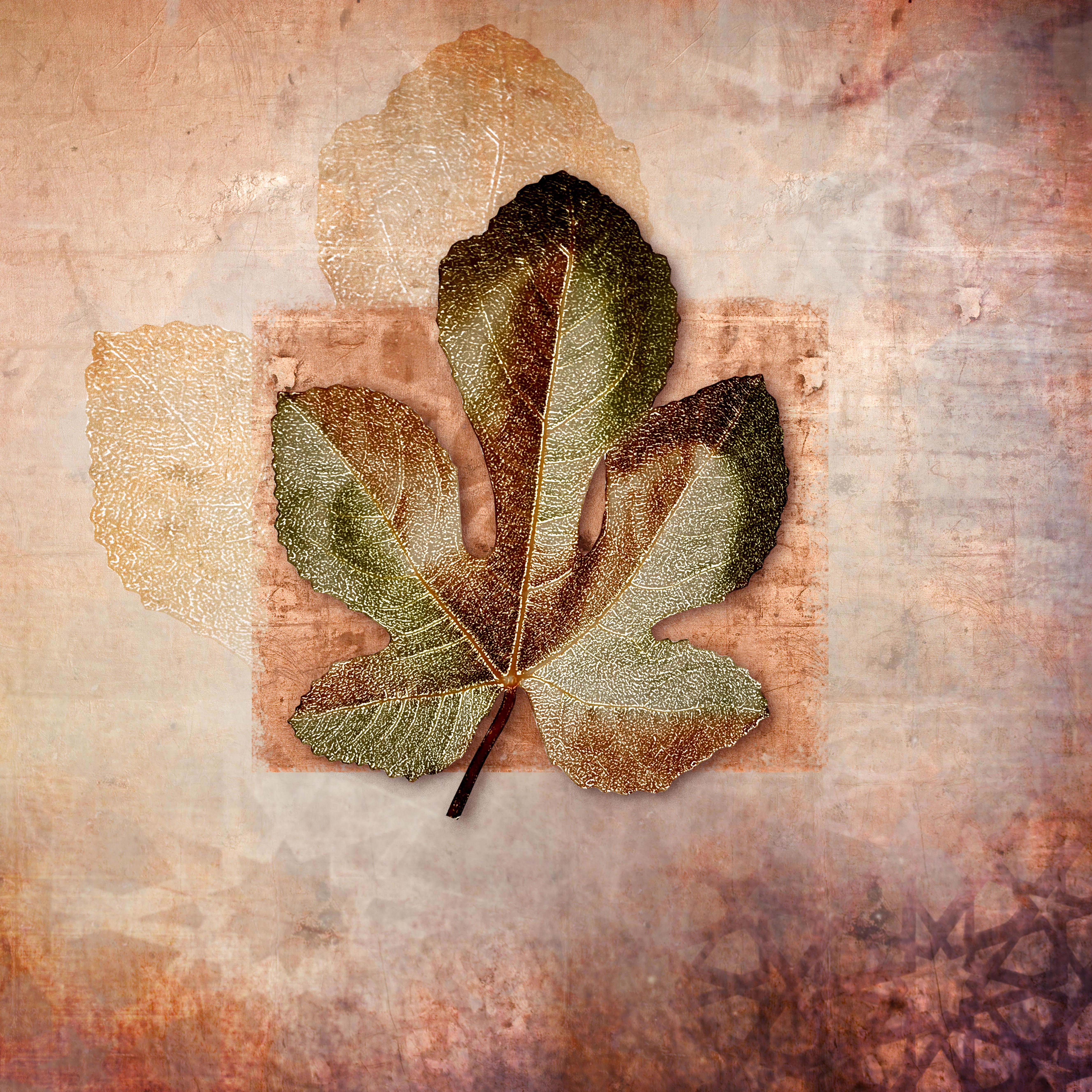 new leaf_10 copy