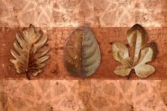 new leaf_17 copy